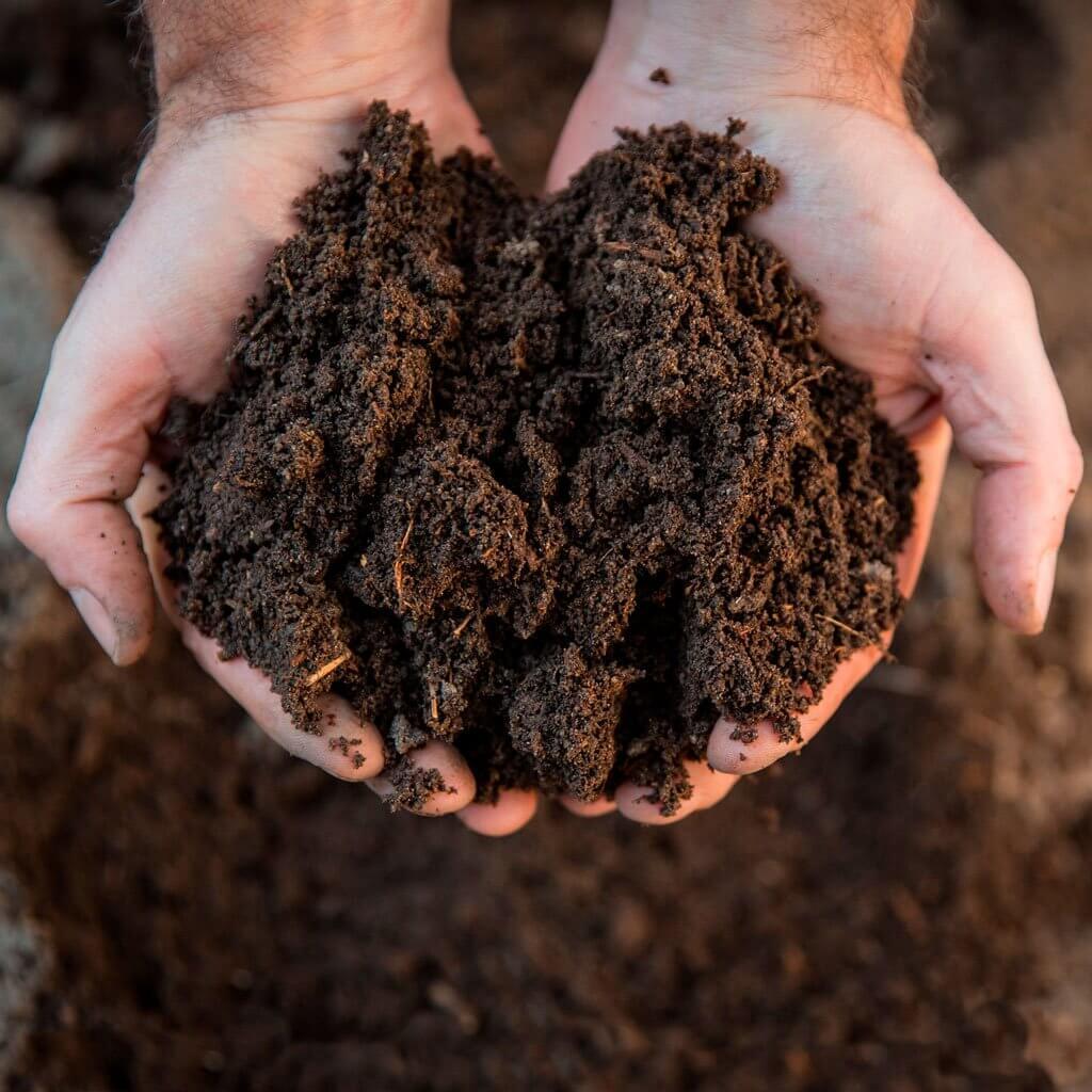 Compost biodinamico en las manos
